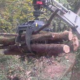 pinza da legna 3